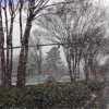 Thumbnail image for Pictures: Atlanta Snow Storm Abandoned Vehicles