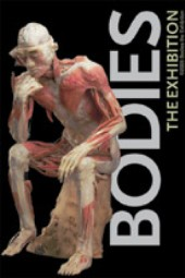 Post image for Bodies The Exhibition Visit