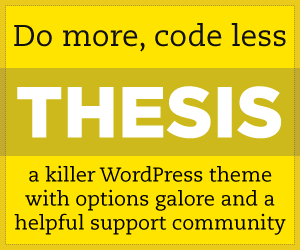 Post image for Blog Relaunch With Thesis DIY Theme